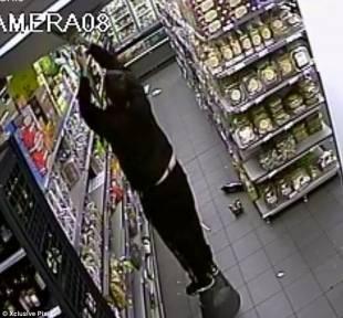 lo staff del supermercato kosher costretto da amedy coulibaly a distruggere le telecamere di sicurezza