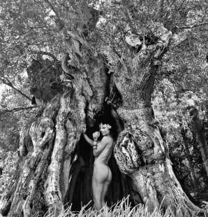 naike posa nuda nel salento tra alberi incantati