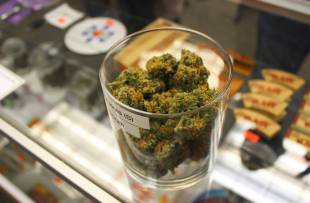 dispensario cannabis