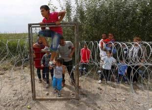 migranti al confine con l ungheria 7