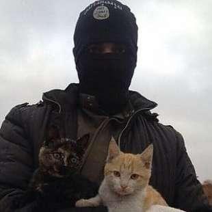 GATTI ISIS