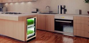 e\' boom di kitchen gardening, orto hi tech da tenere in cucina e che ...