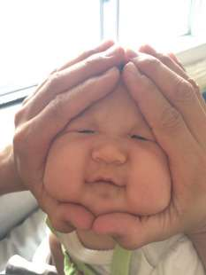 rice ball baby 4