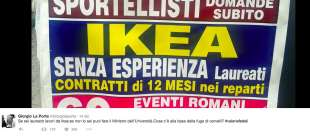 valeria fedeli serve la laurea per fare i commessi ikea