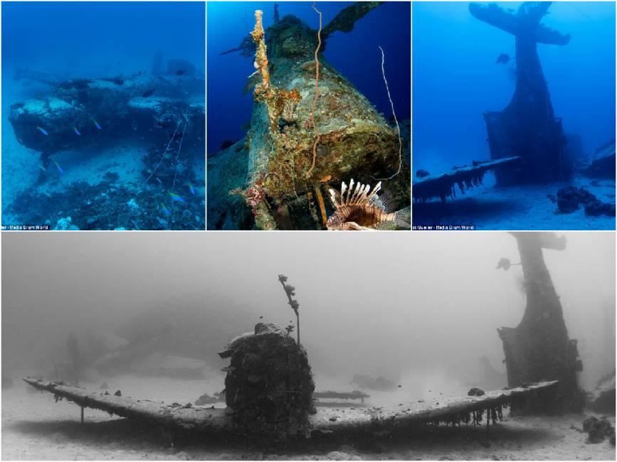 Aerei Da Caccia Americani Seconda Guerra Mondiale : L america ha scaricato caccia nell oceano dopo la fine