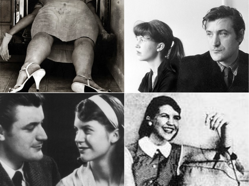 Essay on sylvia plath biography